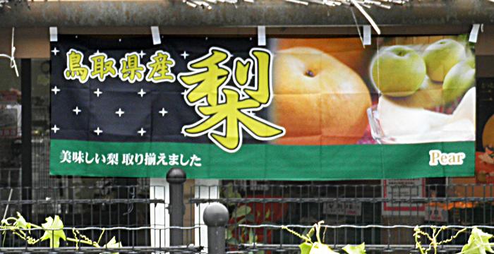 鳥取県産、梨。美味しい梨、取り揃えました。道の駅いちのみや様。
